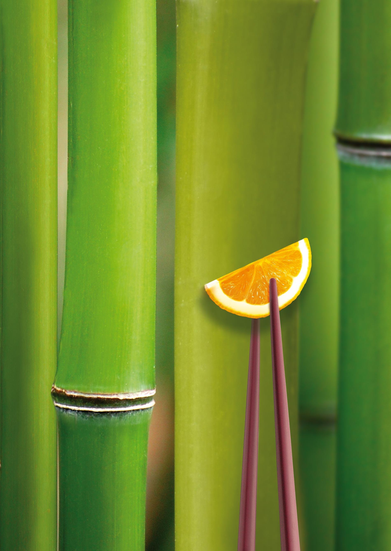 Chicucina Orange auf Stäbchen